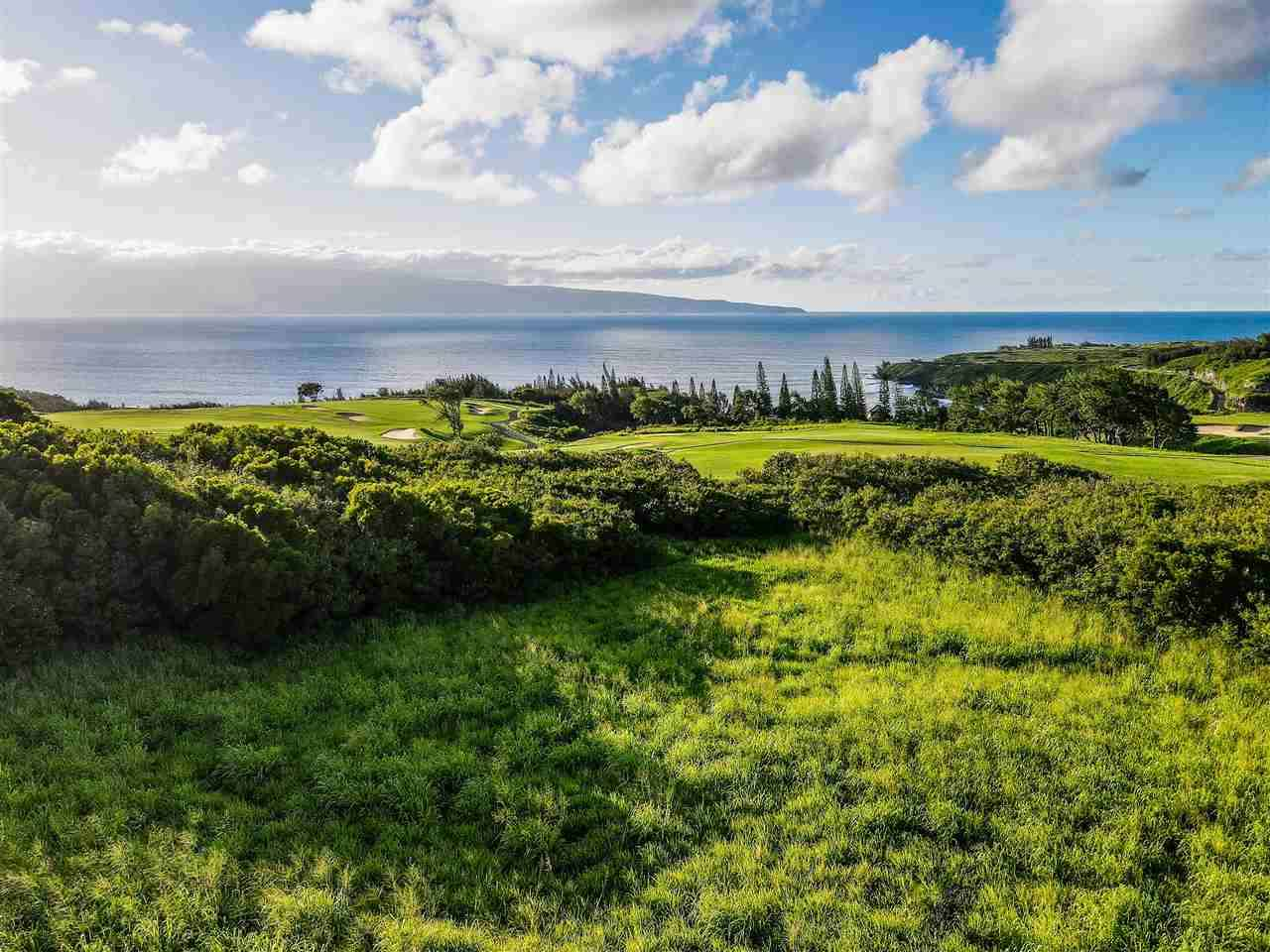 Maui Home for sale 391187