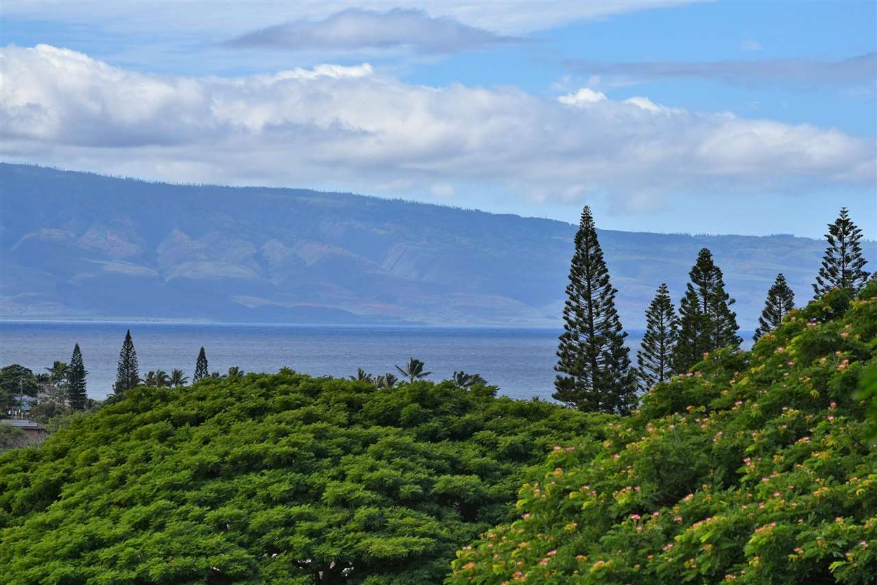 Maui Home for sale 391306